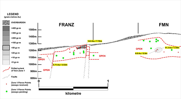 Long Section of Vein Zone 1: FMN & Franz